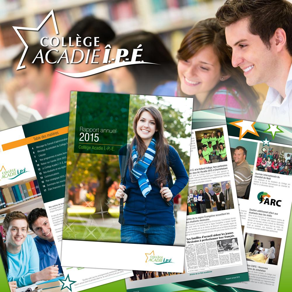 CAIPE AnnualReport 2015 SMpost